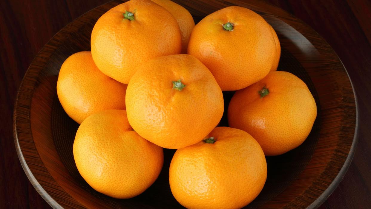 果汁中の糖度が高い「濃厚アイランドミカン(久能温州)」