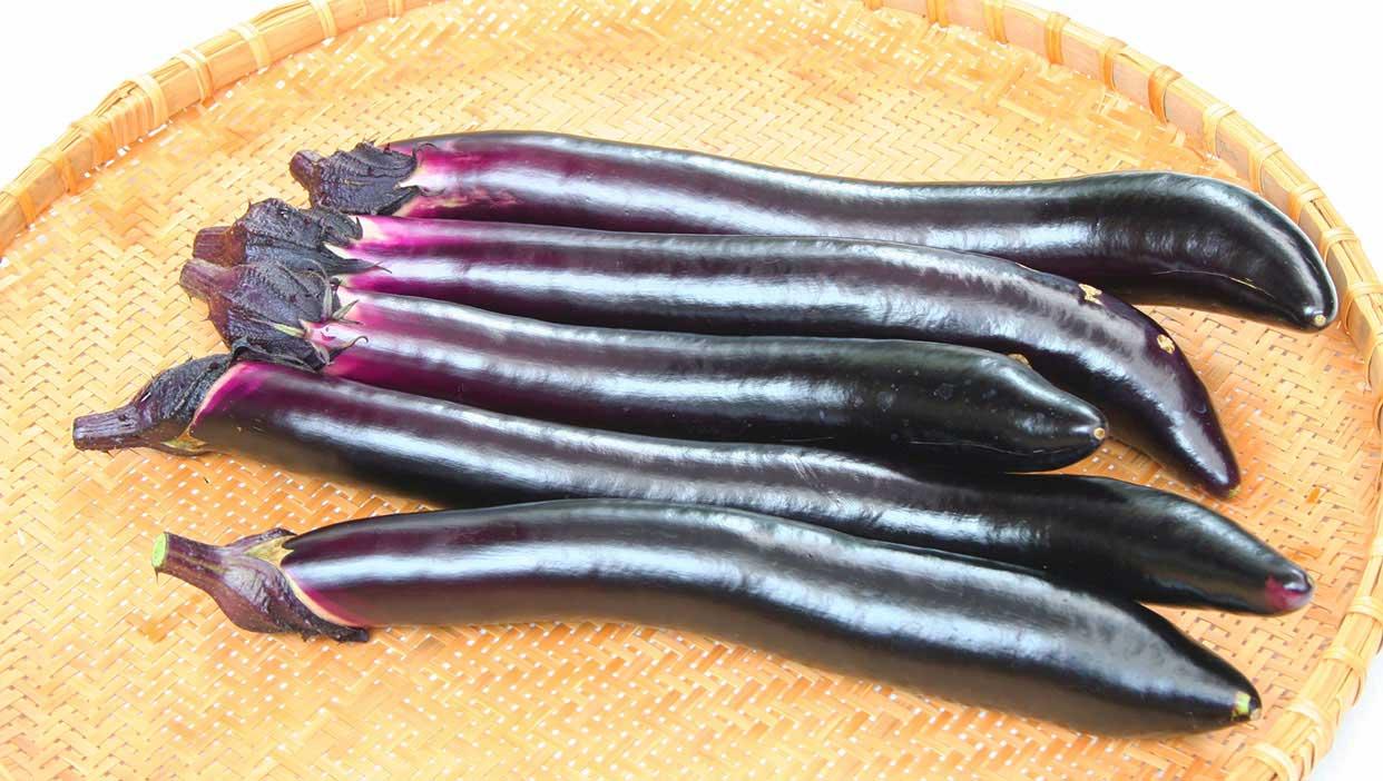 最長40cm!熊谷さんが丹精込めて栽培する「長なす」