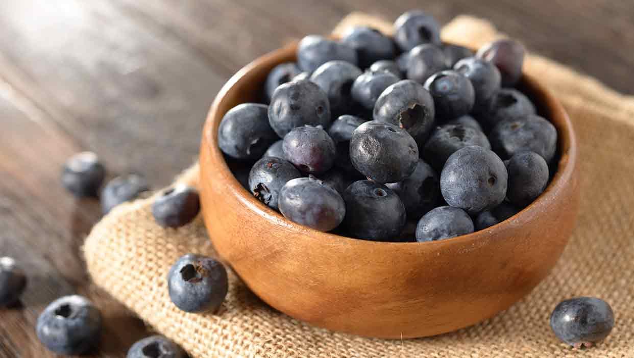 農薬不使用だからそのまま食べられる!いくみさんがつくる農薬不使用の「ブルーベリー」