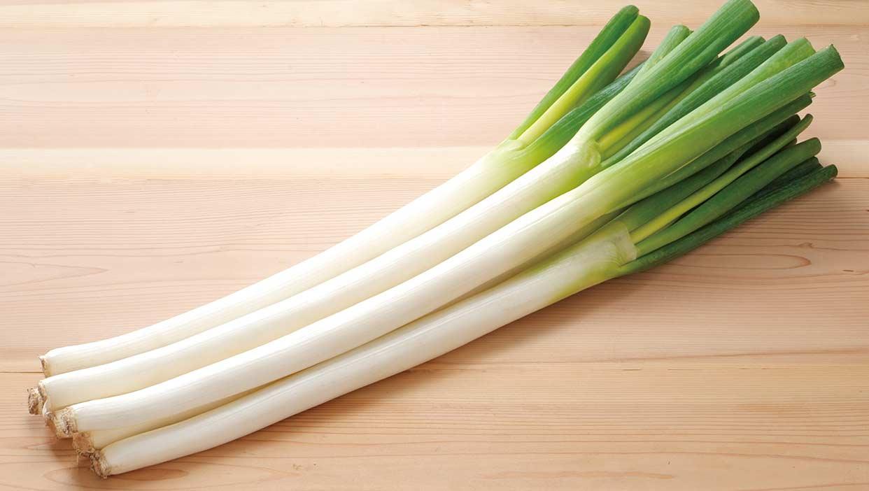 水本さんが作る、甘くとろける自慢の「白ネギ」