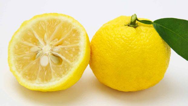オーガニック柚子 「柚奈〜YUNA〜」