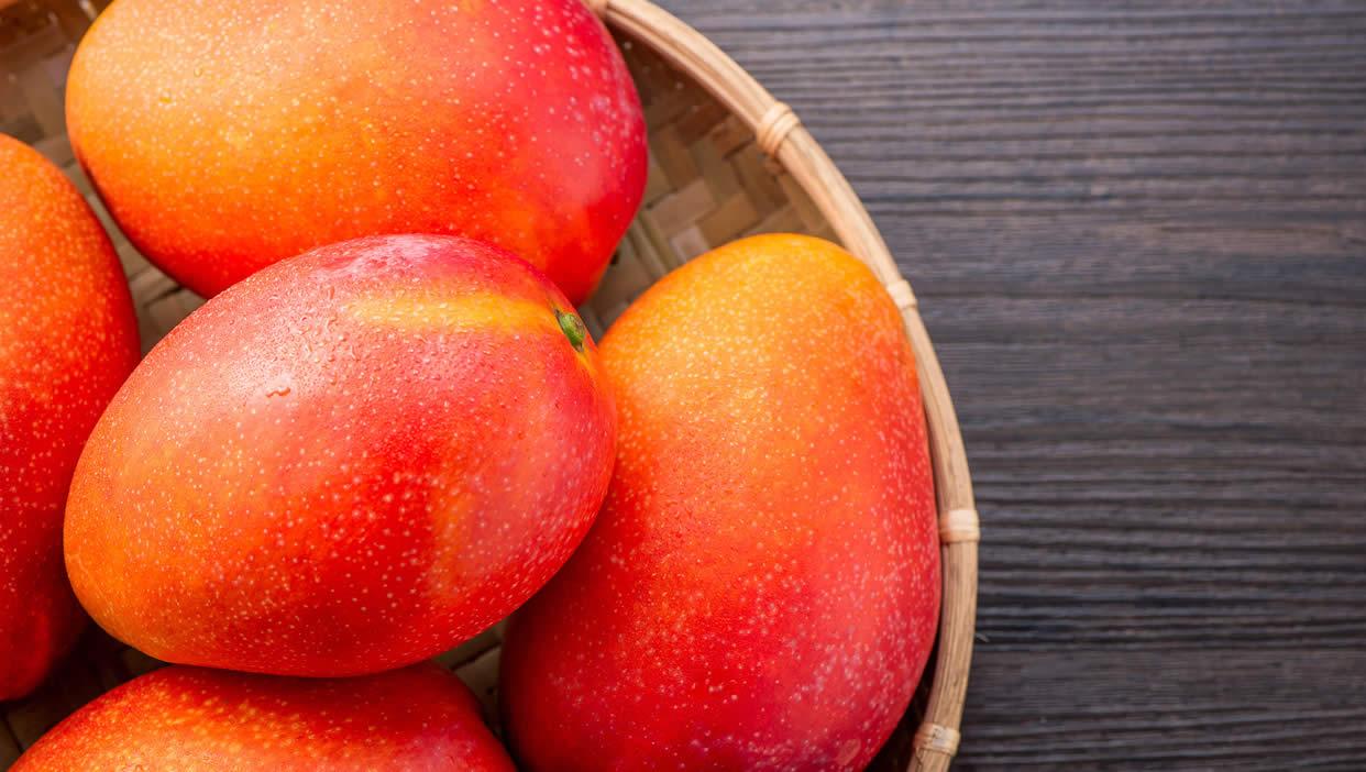 やんばるマンゴー