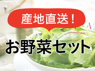 産地直送お野菜セット